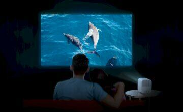 xiaomi projektor