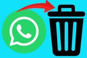 whatsapp smazání